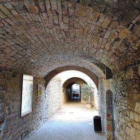 """Il progetto """"Brunelleschi a Castellina"""""""